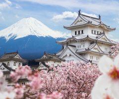 ทำไมญี่ปุ่นถึงเลือกทำสงคราม?