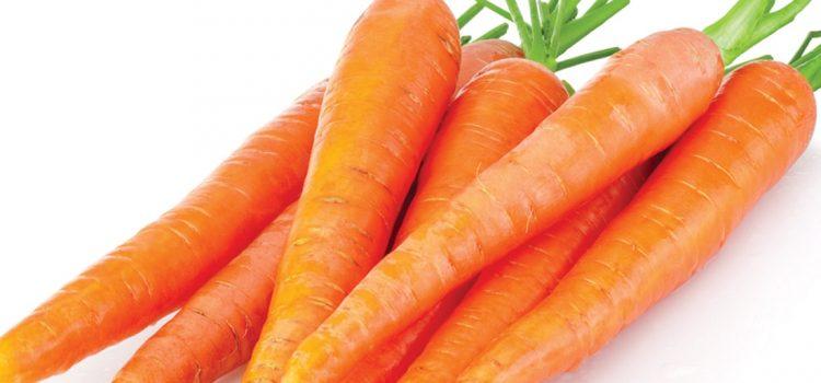 ข้อดีของการเจริญพันธุ์ของแครอท